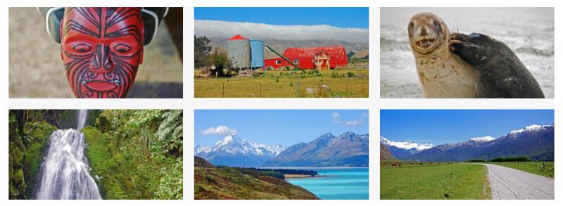camilla kornerup newzealand