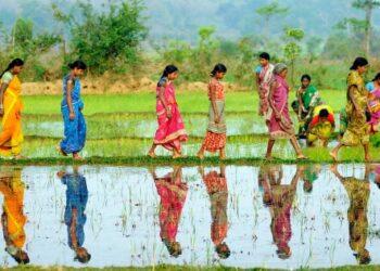 peter johansen foredrag indien kvinder foredragsportalen
